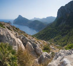Corporate Incentives in Mallorca with Mallorca Luxury Holidays